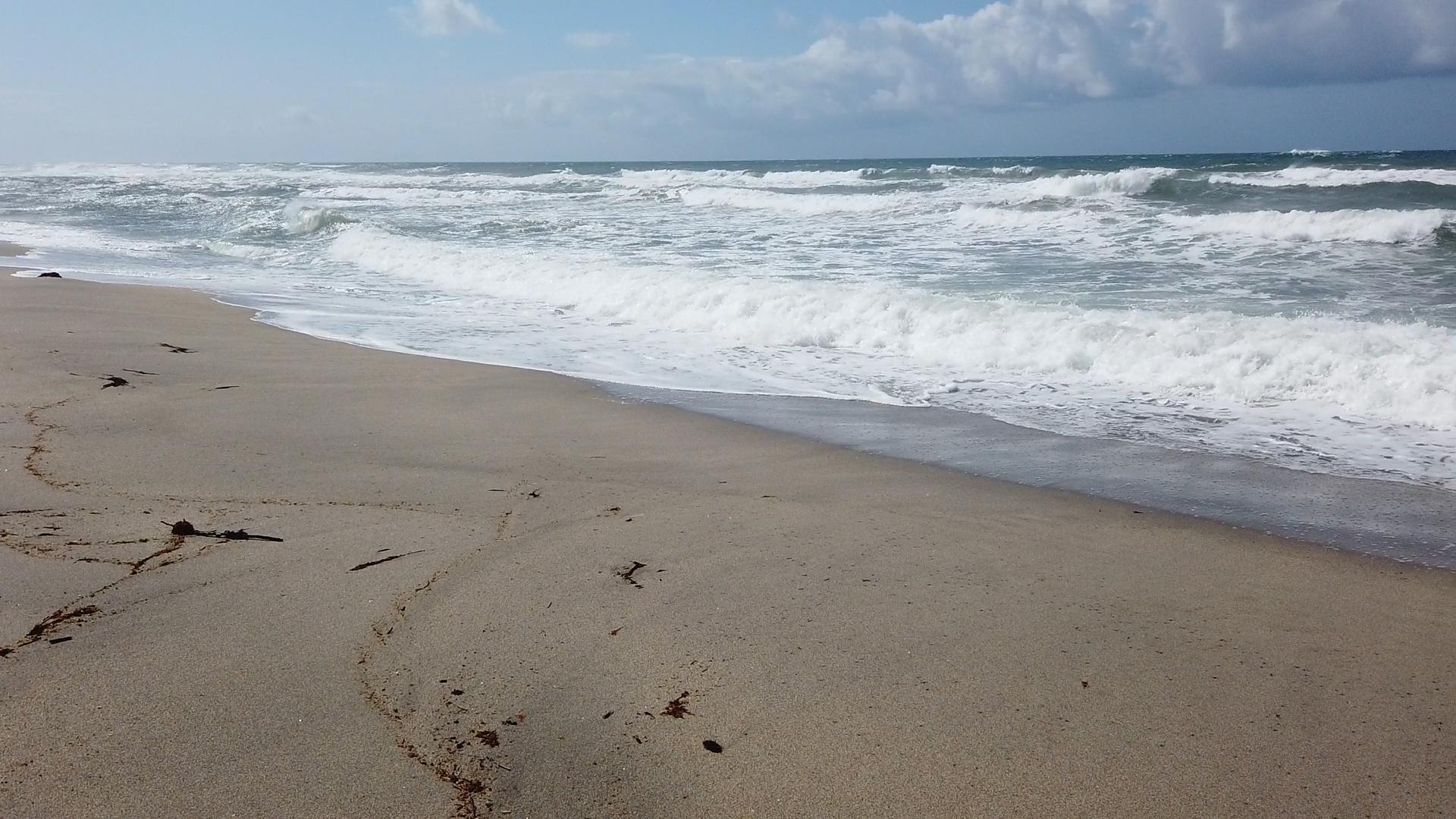 沖広く大海をのぞむ
